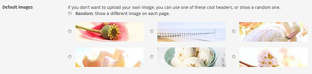 Default header images in the Simplicity WordPress theme