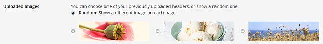 Setting a random header image in WordPress