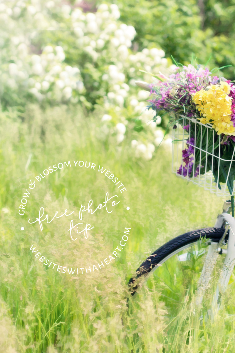 Free Image Tip - Bicycle in meadow with flowers