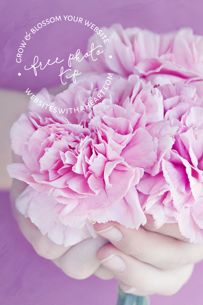 Free image - Pink Bouquet