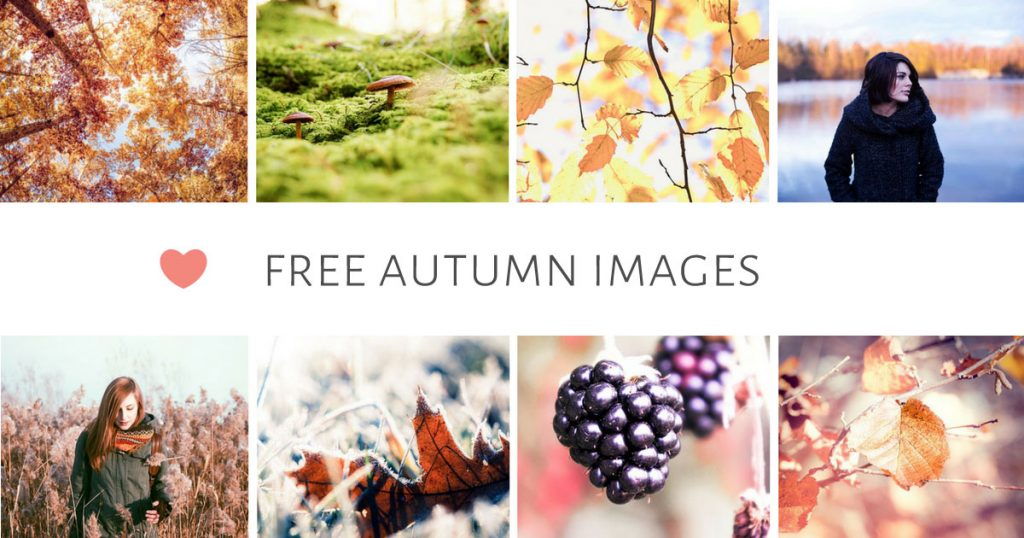 free-autumn-images