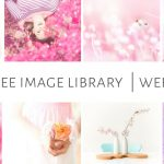 Free Image Library - Week 27