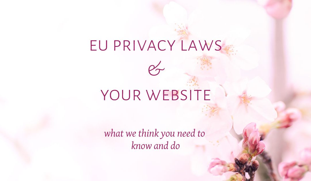 EU Privacy Laws & your website