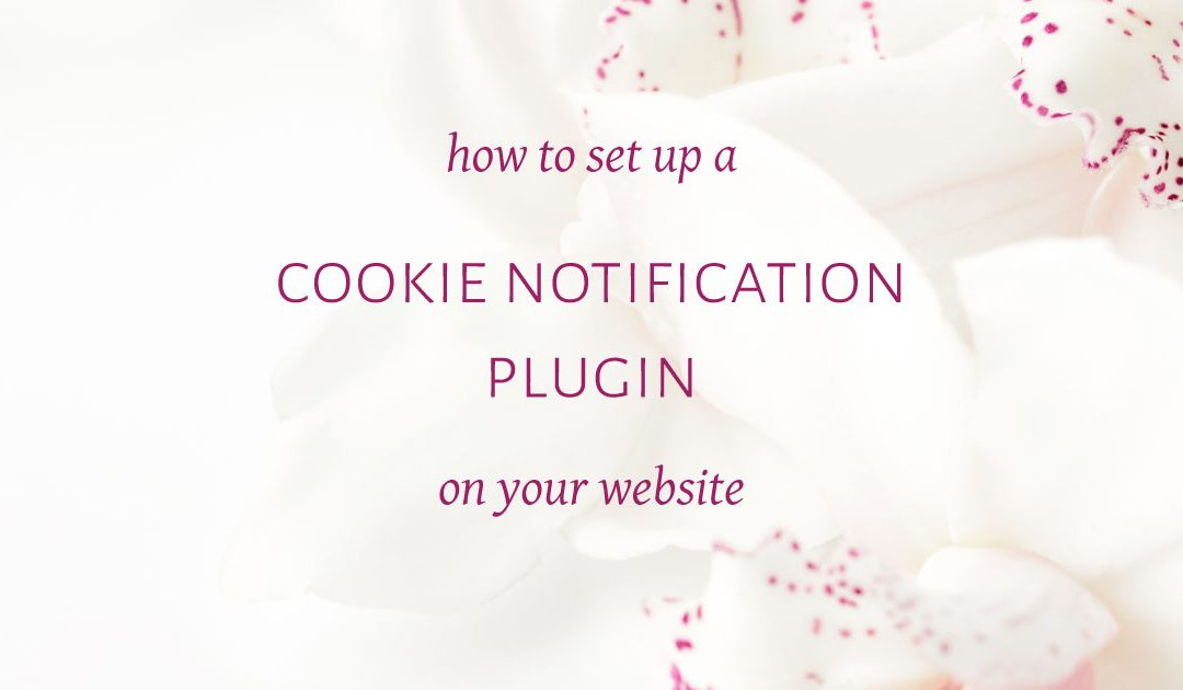 How to setup a Cookie Notification plugin on your website