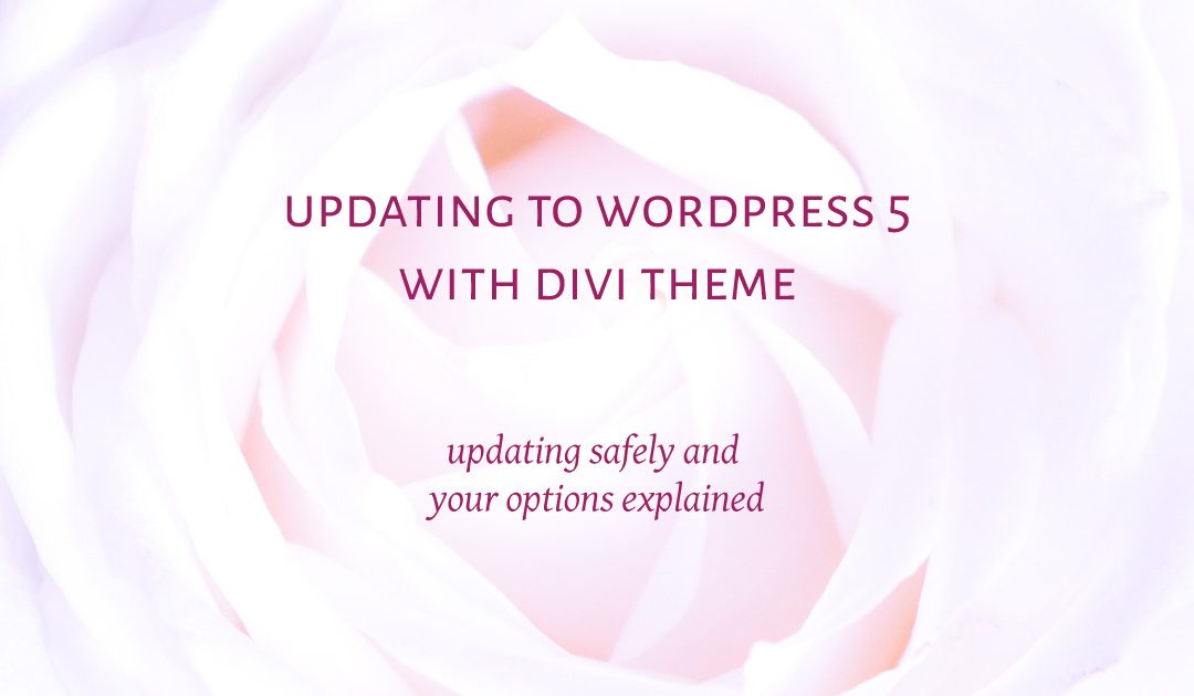 Updating to WordPress 5 with Divi